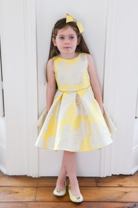 Floral Brocade Party Dress