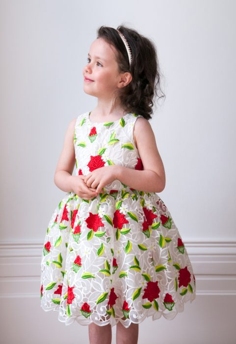 Ivory and Red Rose Birthday Dress