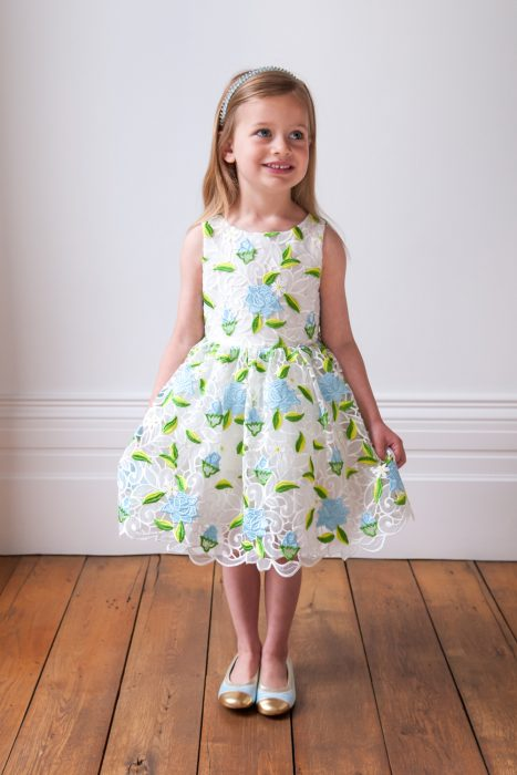 Ivory and Blue Rose Birthday Dress