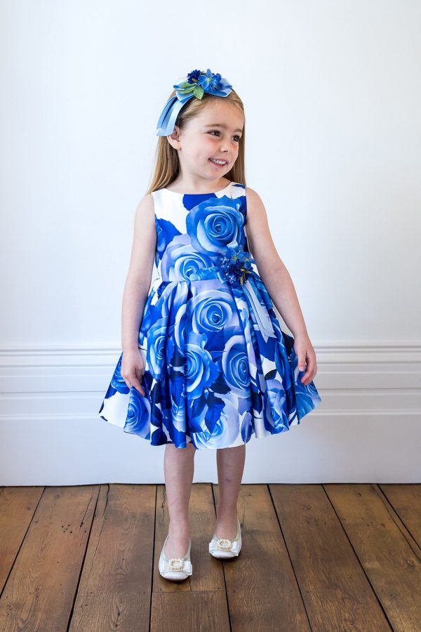 Ivory and Blue Rose Party Gown
