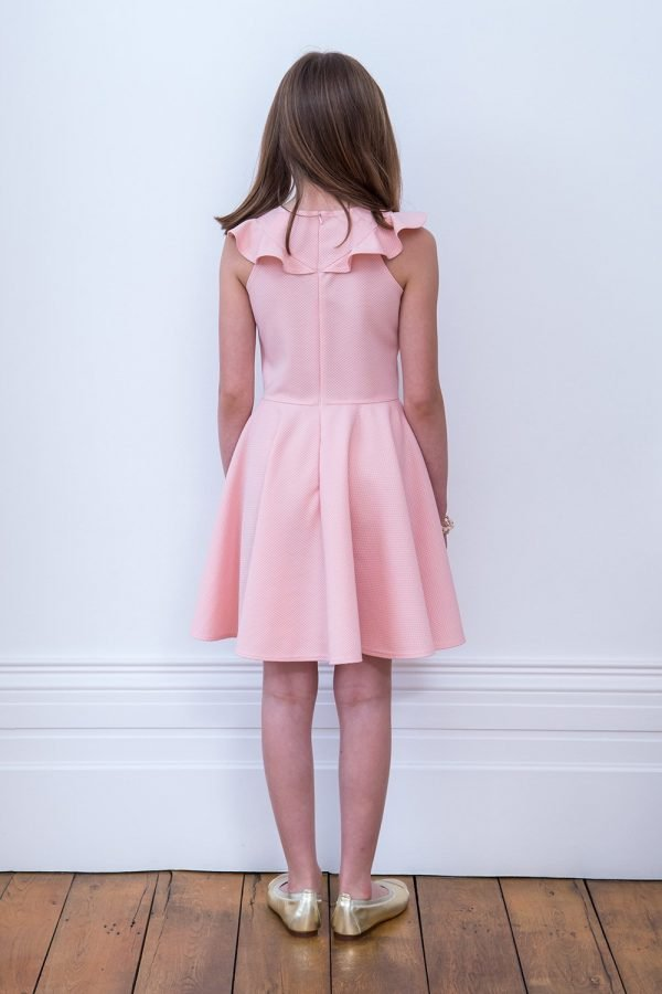 Pale Pink Frill Birthday Dress