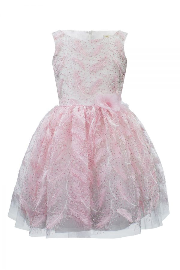 Powder Pink Feather Birthday Gown