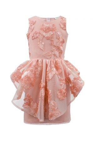 Blush Pink Floral Peplum Dress