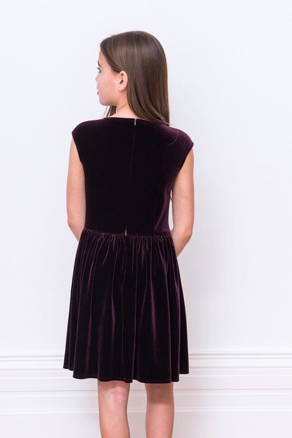 Plum Velvet Floral Party Dress