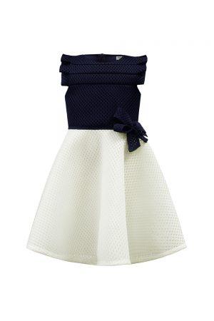 Navy and Ivory Skater Dress