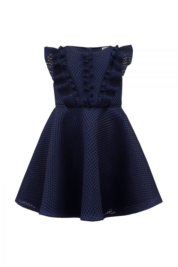 Navy Ruffle Skater Dress