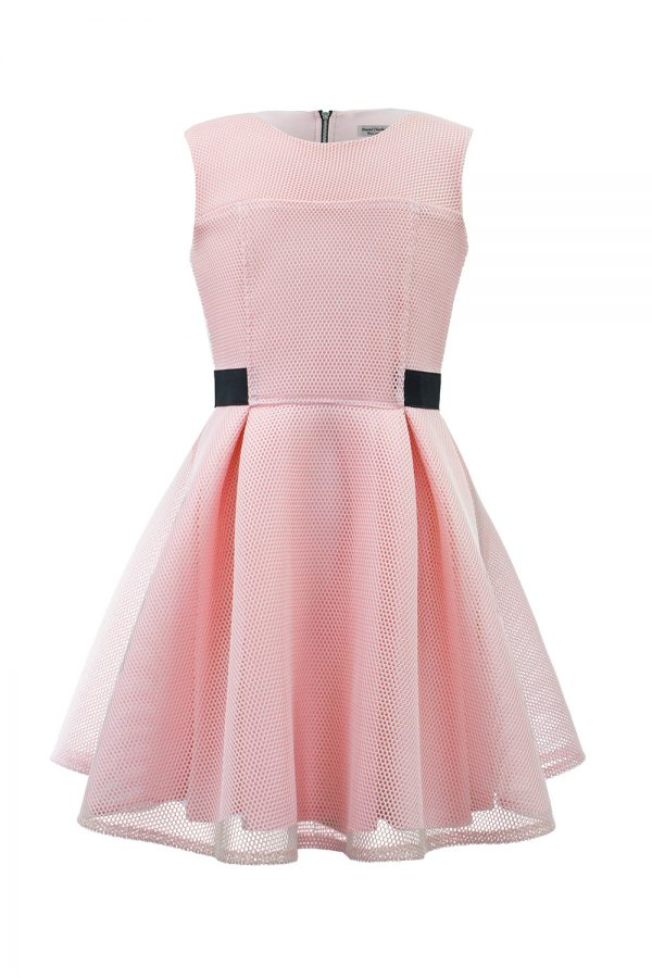 Parisian Pink Skater Dress