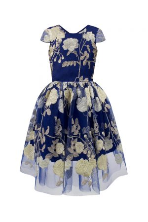 royal blue and gold opera gown