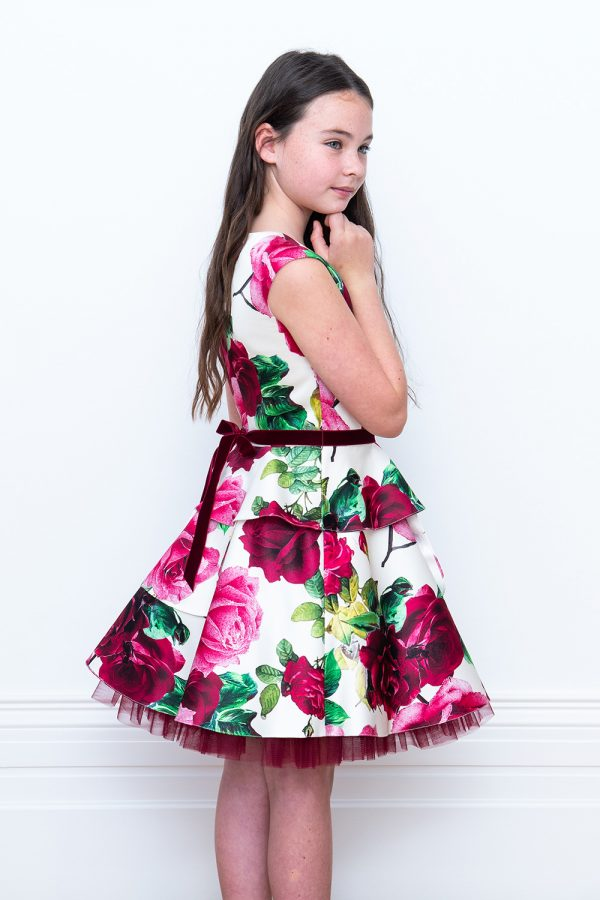 wine printed birthday dress
