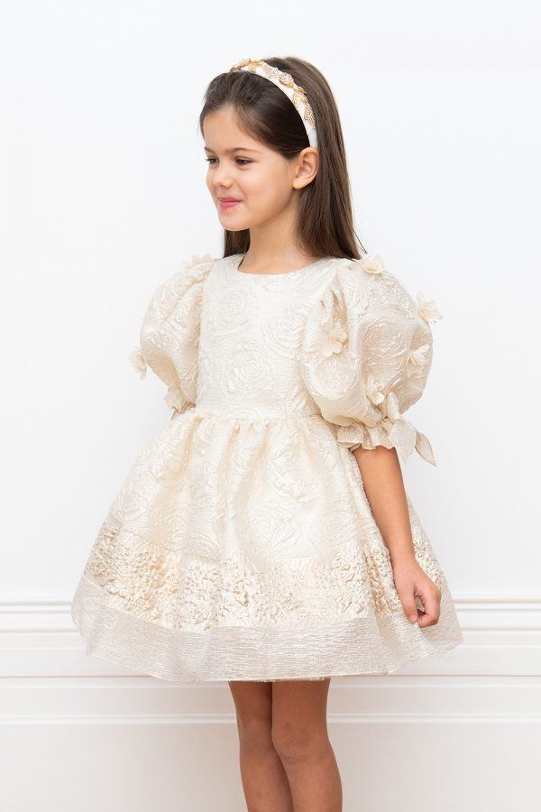 ivory and gold organza dress
